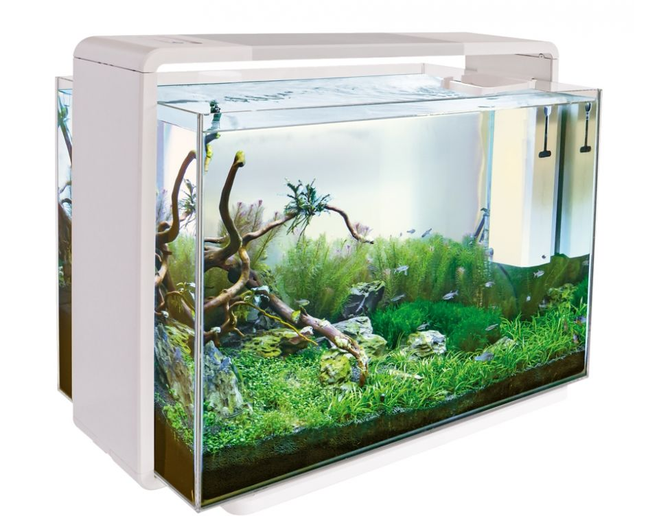 Home 110 Wit - Aquascaping Aquarium