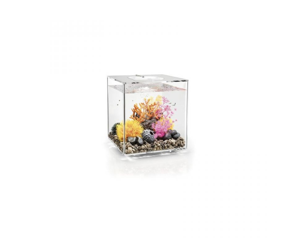 Aquarium biOrb cube 30 MCR transparant