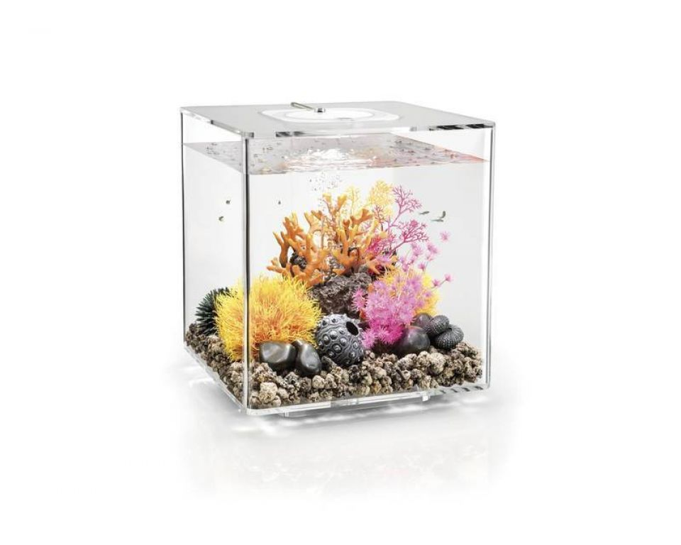 Aquarium biOrb cube 60 MCR transparant