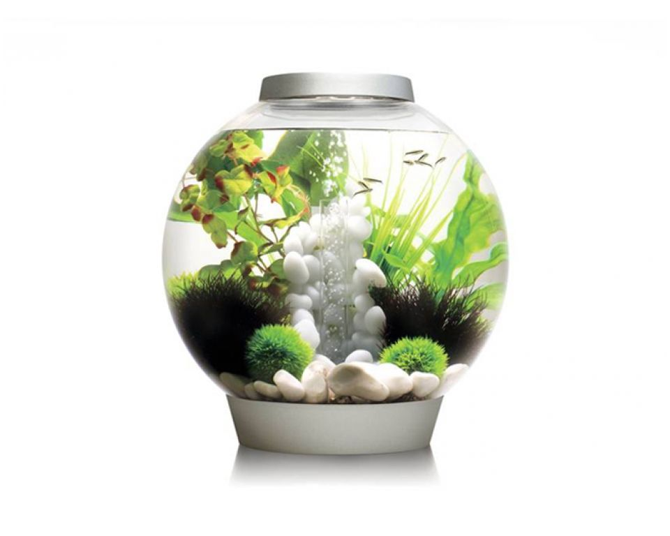 Aquarium biOrb classic LED 30 liter zilver thermo
