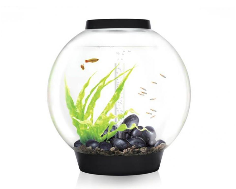 Aquarium biOrb classic LED 60 liter zwart