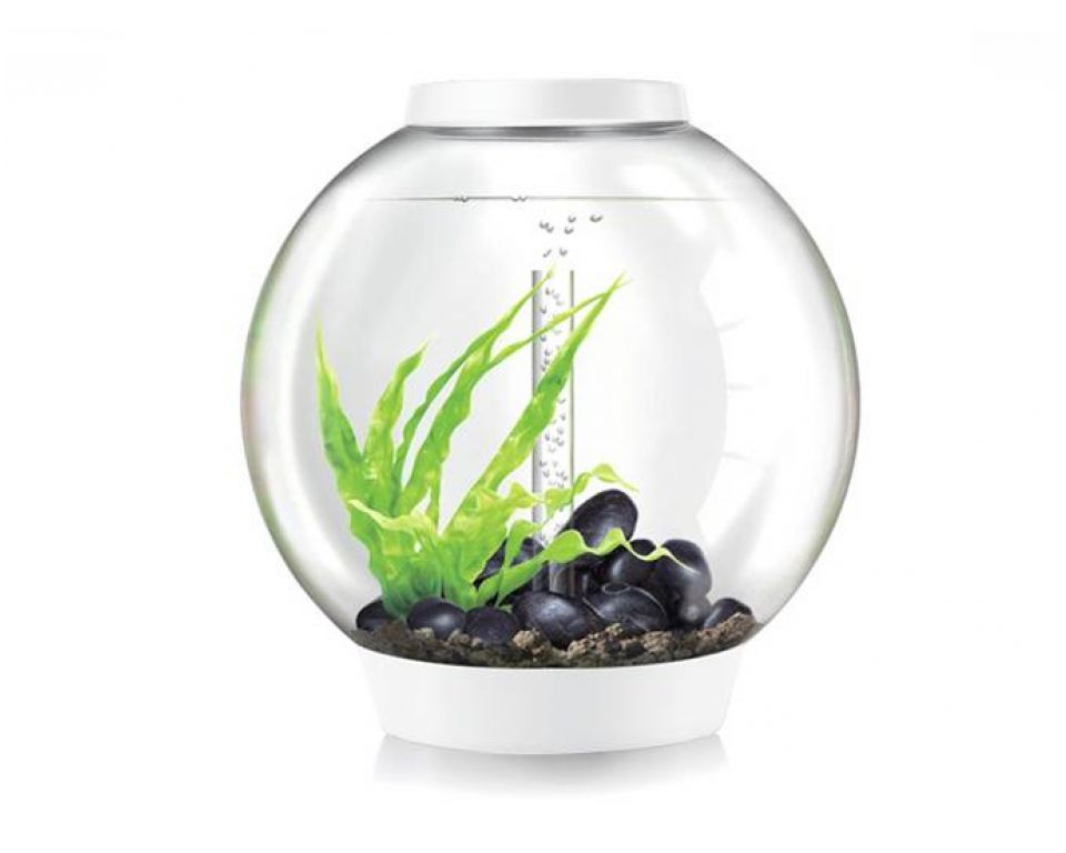 Aquarium biOrb classic LED 60 liter wit