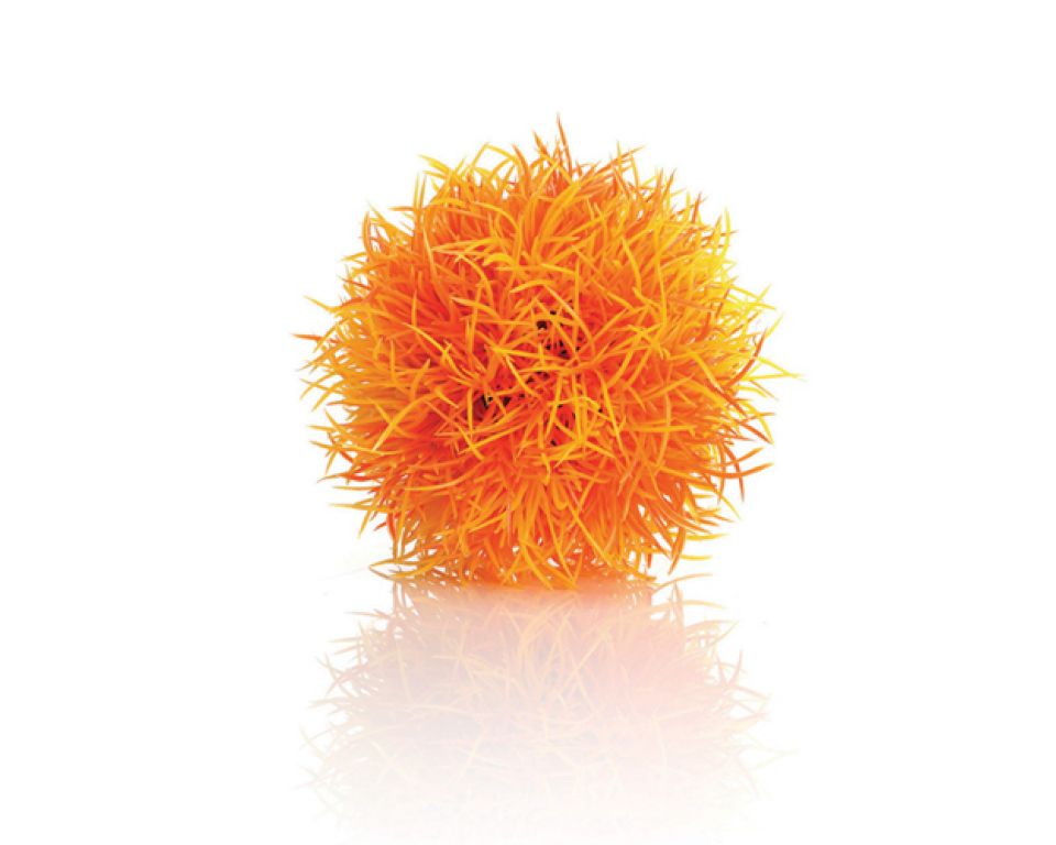 biOrb decobal oranje
