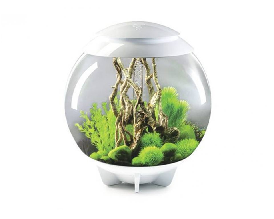 Aquarium biOrb halo led 60 liter moonlight wit