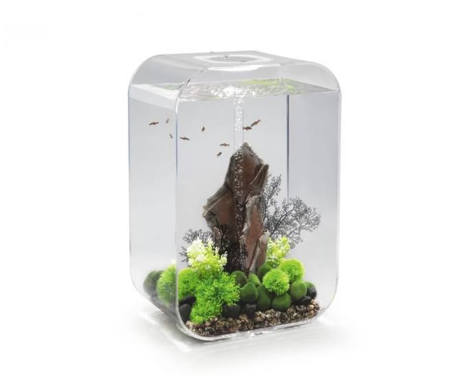biorb life mcr 60 liter transparant aquarium webshop. Black Bedroom Furniture Sets. Home Design Ideas