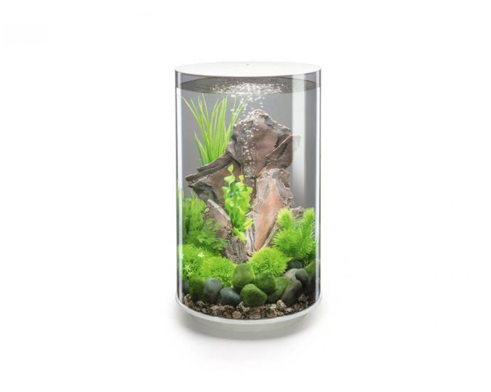 Aquarium biOrb tube LED 30 liter wit