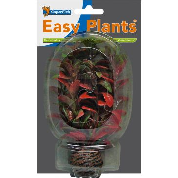 SuperFish Easy Plant Laag 13 CM Nr. 7