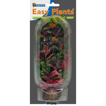 SuperFish Easy Plant Middel 20 CM Nr. 6