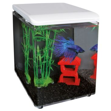 SuperFish Home 8 Aquarium Wit | Betta aquarium