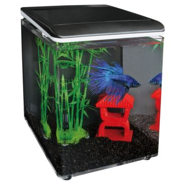 SuperFish Home 8 Aquarium Zwart | Betta aquarium