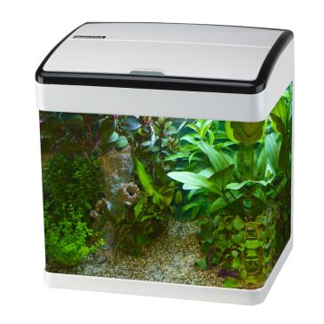 Panorama LED 50 Aquarium