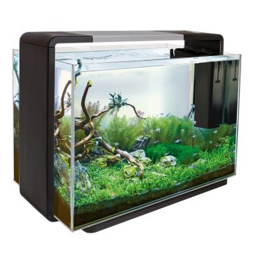 Home 110 Zwart - Aquascaping Aquarium