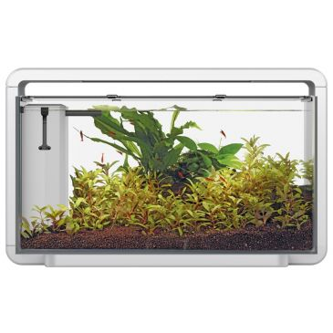 Home 30 Wit - Aquascaping Aquarium