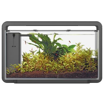 Home 30 Zwart - Aquascaping Aquarium