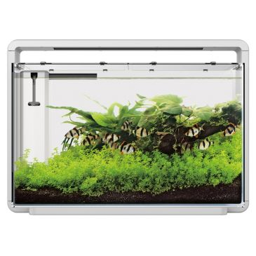 Home 65 Wit - Aquascaping Aquarium