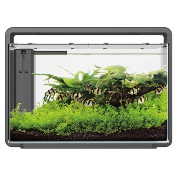 Home 65 Zwart - Aquascaping Aquarium