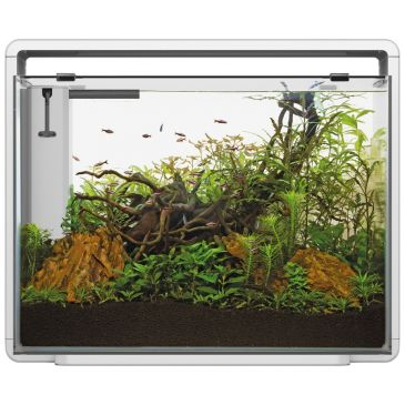 Home 85 Wit - Aquascaping Aquarium