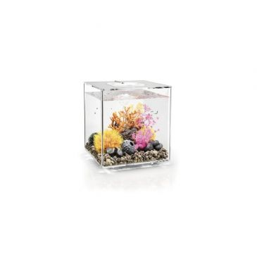 Aquarium biOrb cube 30 LED transparant