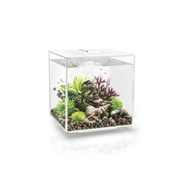 Aquarium biOrb cube 30 MCR wit