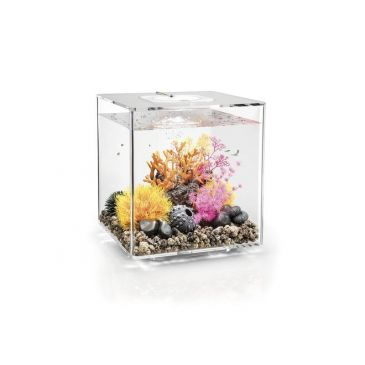 Aquarium biOrb cube 60 LED transparant