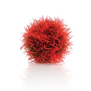 biOrb decobal rood