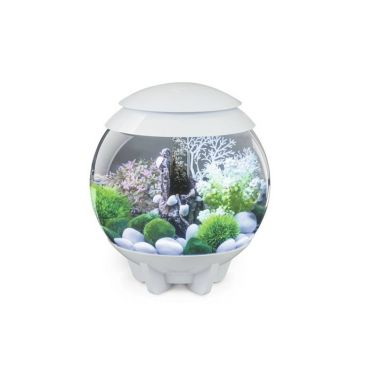 Aquarium biOrb halo mcr 15 liter wit