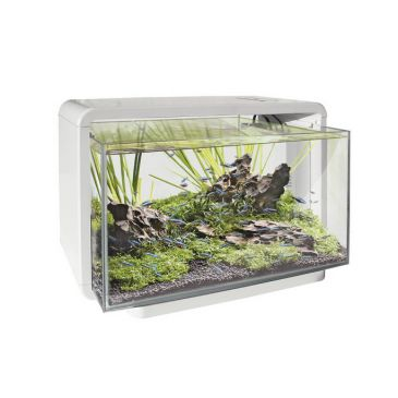 Superfish Home 25 - Wit