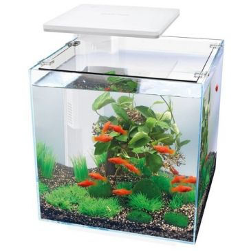 SuperFish Qubiq 60 PRO Wit Aquarium