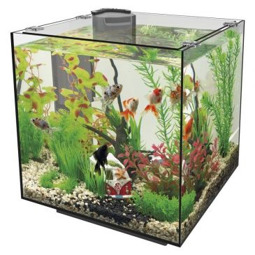 SuperFish Qubiq 30 Zwart Aquarium
