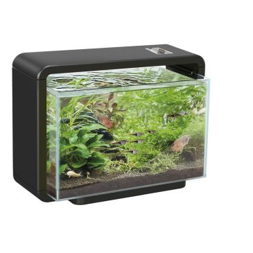 Superfish home 15 zwart