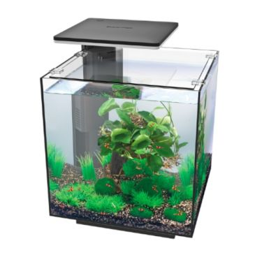 SuperFish Qubiq 60 PRO Zwart Aquarium