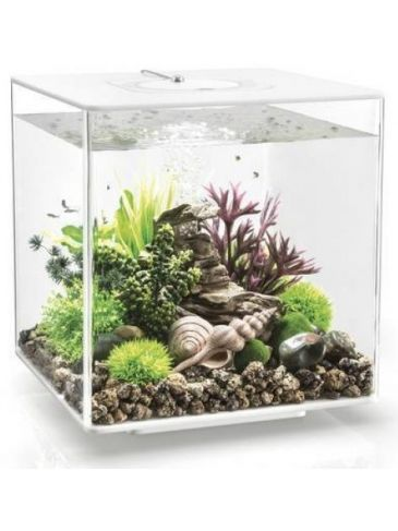 Aquarium biOrb cube 30 LED wit