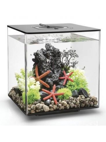 Aquarium biOrb cube 30 LED zwart