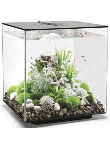Aquarium biOrb cube 60 LED zwart