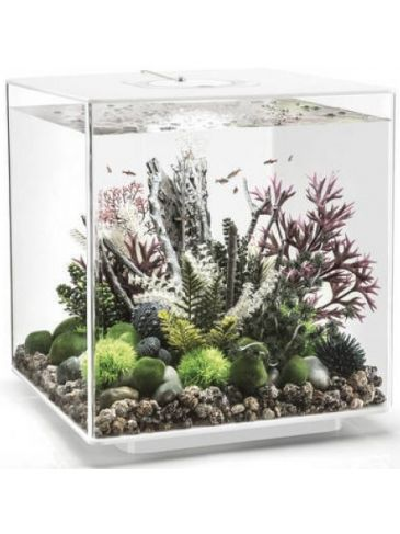 Aquarium biOrb cube 60 MCR wit