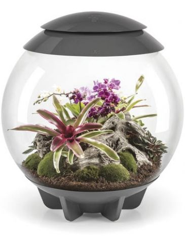 Terrarium biOrb air led 60 liter grijs