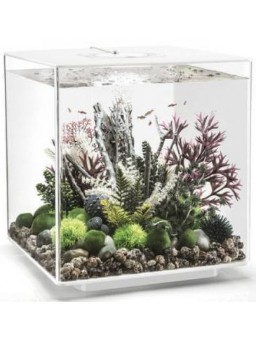 Aquarium biOrb cube 60 LED wit