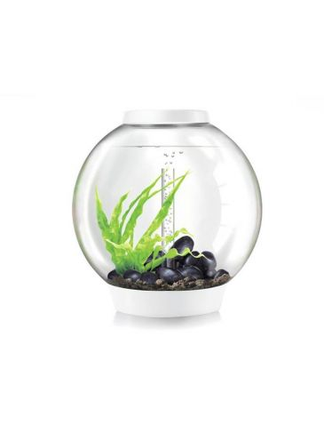 Aquarium biOrb classic LED 60 liter wit thermo