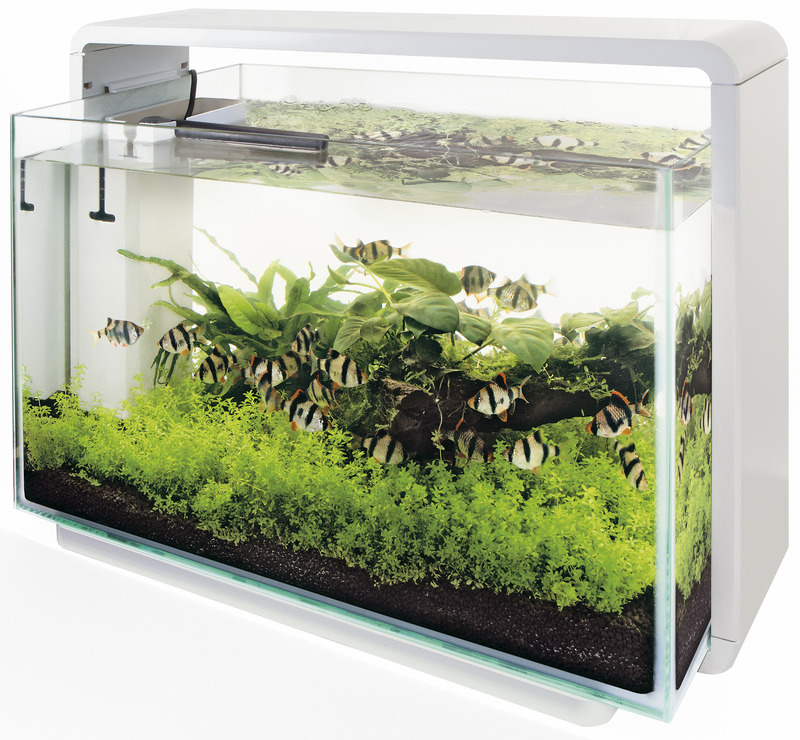 Superfish home 60 wit
